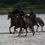 Clew Bay Horseriding